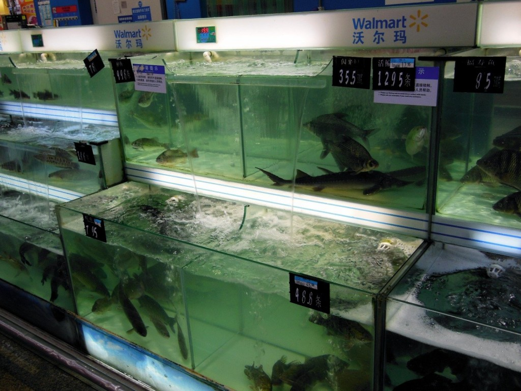 20 items you can only discover in a chinese walmart 9 20 Weird Things You Can Only Get At a Chinese Walmart